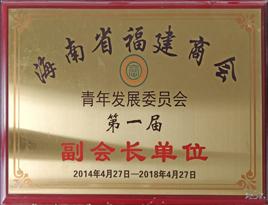 海南省福建省商会青年发展委员会